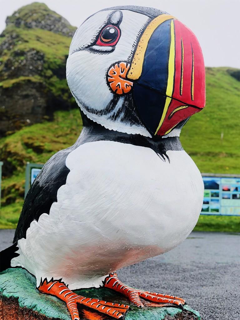islanda 2018 puffin